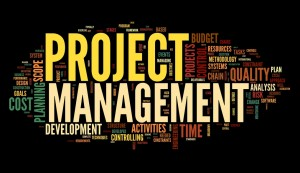 project management